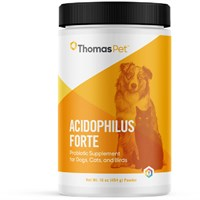 Thomas Labs Acidophilus Forte Powder 16 oz