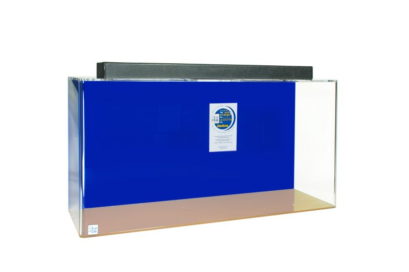 Acrylic Rectangle Aquarium 100 Gallon Blue