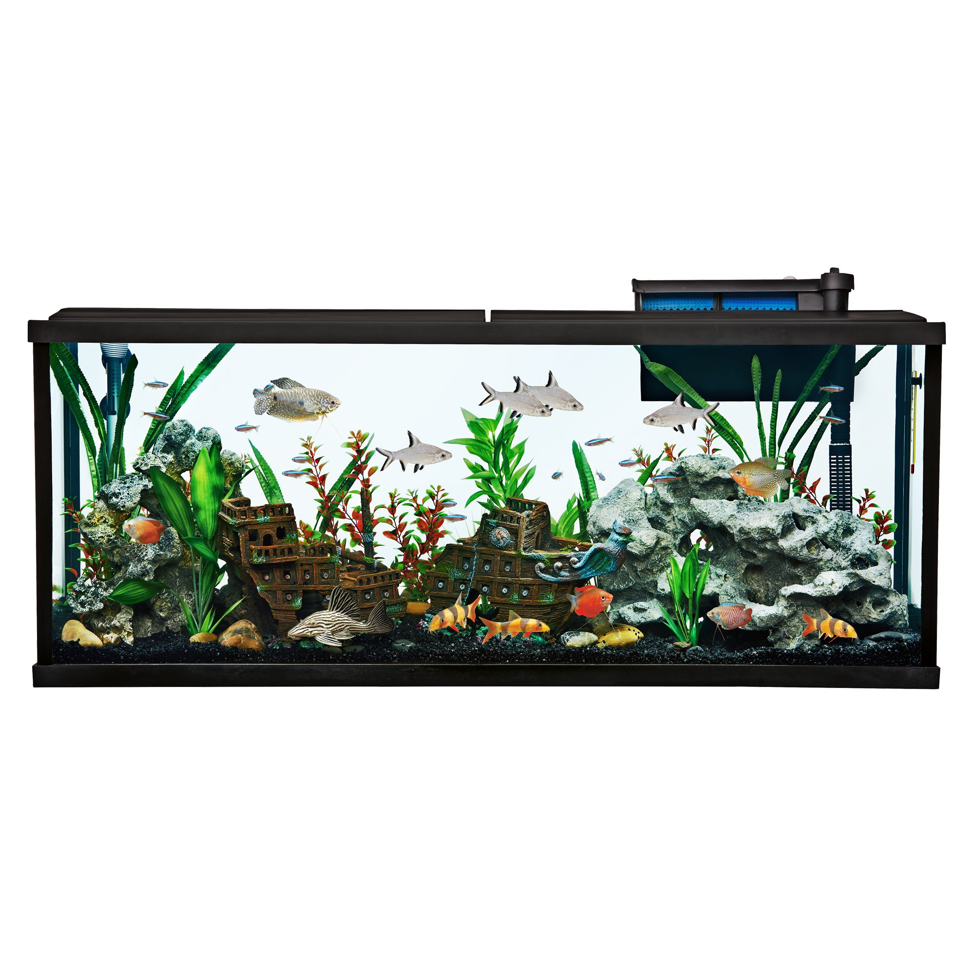 Top Finreg 55 Gallon Aquarium Starter Kit size 55 Gal