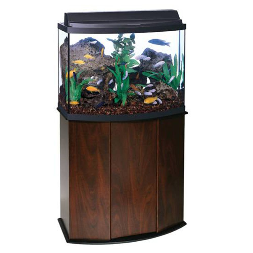 Aqueonreg 36 Gallon Bow Front Aquarium Ensemble size 36 Gal Brown