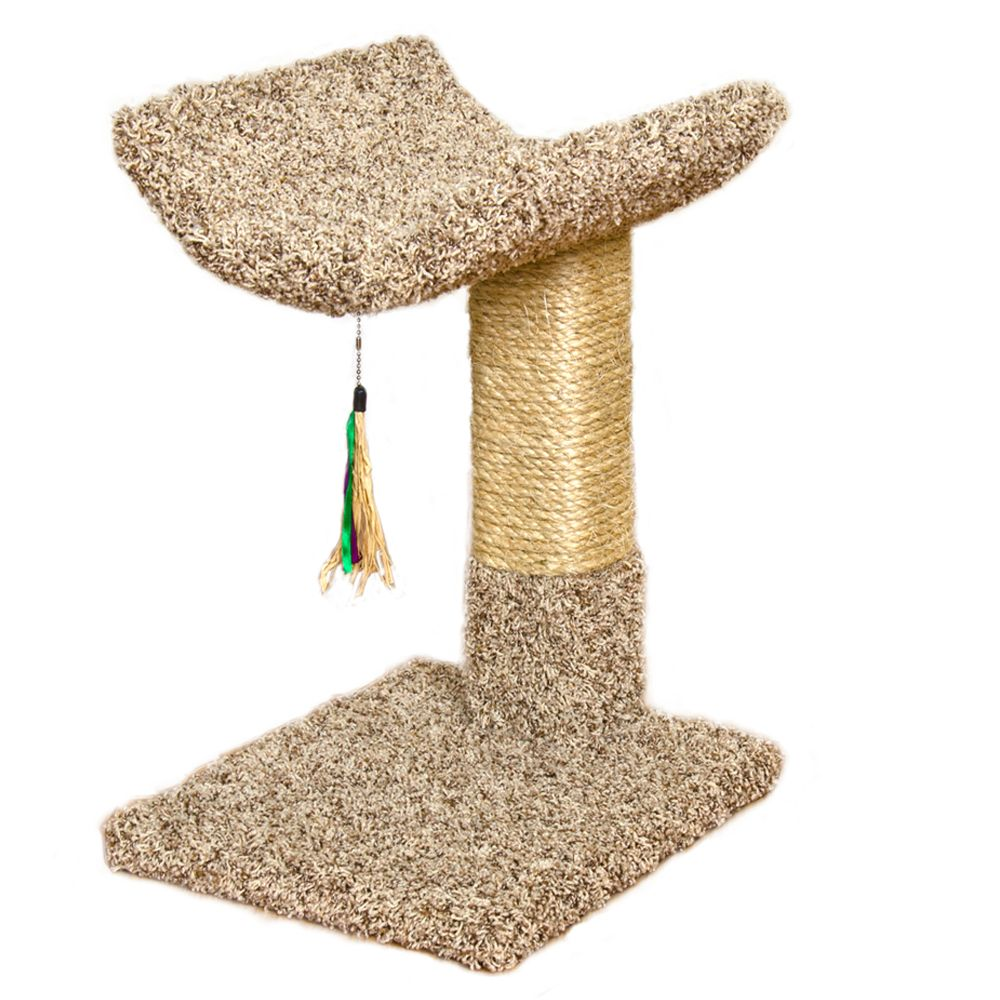 Whisker Cityreg Cactus and Cradle Cat Tree