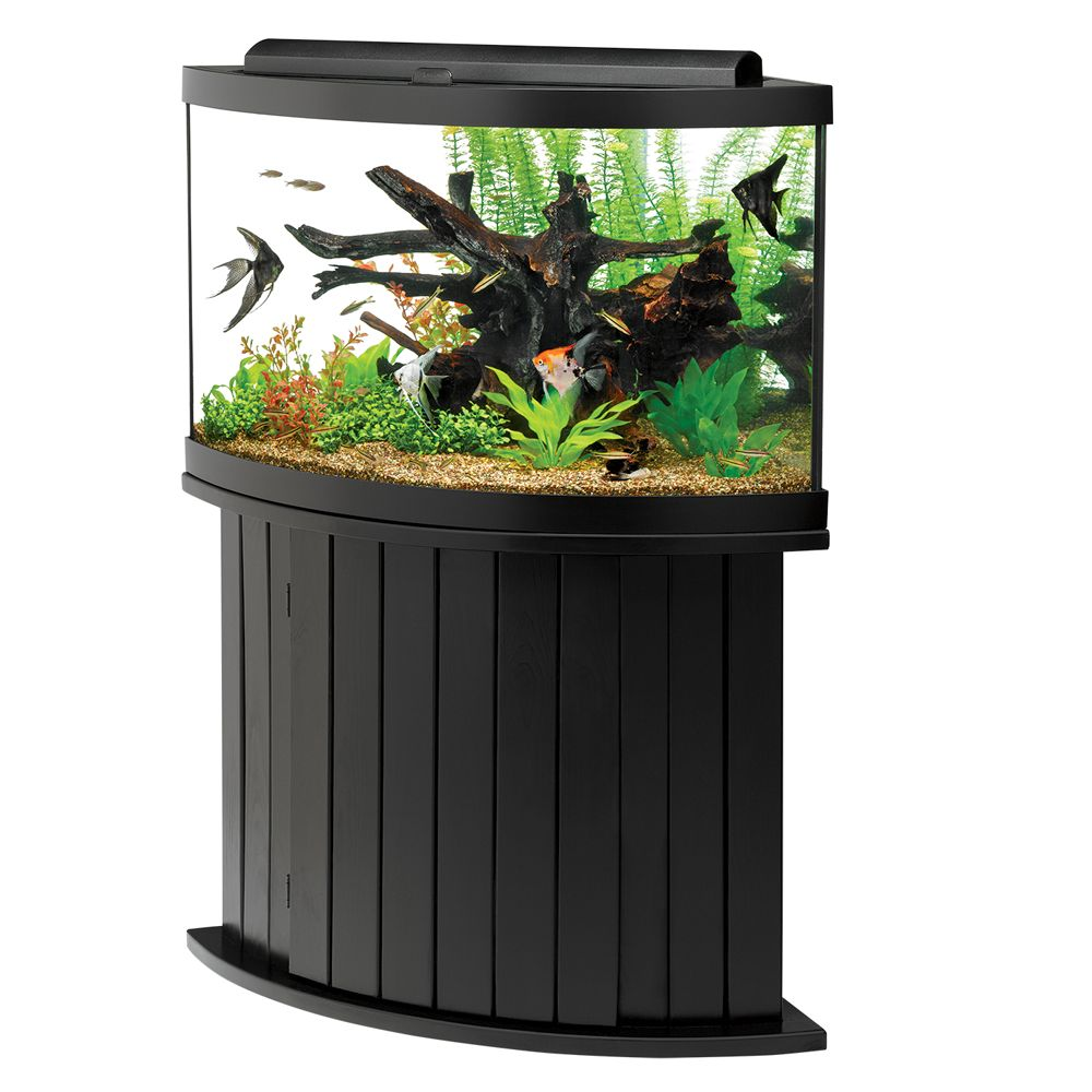 Aqueon 65 gallon aquarium ensemble for Aqueon fish tank