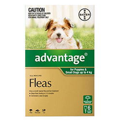 Advantage Small Dogs Pups 110lbs Green 12 Doses