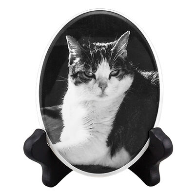 "Pet Photo Porcelain Oval Collectible 2-3/4"" X 3-1/2"" B & W"