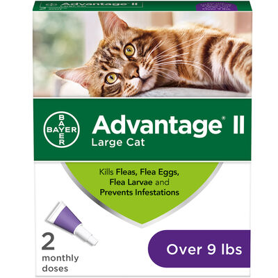 Advantage II 2 pk Cat Over 9 lbs