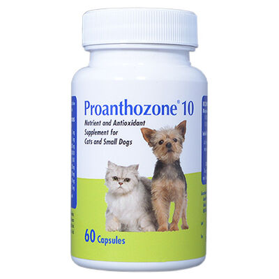 Proanthozone Antioxidant Small Dogs & Cats 10 mg 60 ct