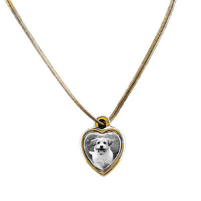 "Pet Photo Porcelain Heart Locket 10K Gold Plated 3/4"" B & W"