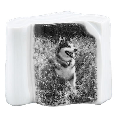 Pet Photo Porcelain Stand Up Collectible Book - B & W