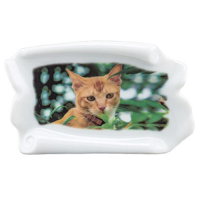 Pet Photo Porcelain Stand Up Collectible Scroll - Color