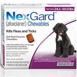 Nexgard Chewables For Large Dogs 24.1-60 Lbs Purple 68mg 12 Chews