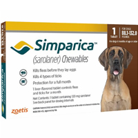 Simparica Chewables For Dogs Above 88 Lbs Red 6 Pack