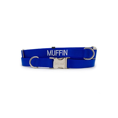 "Coastal Pet Personalized Adjustable Nylon Spectra Collar in Blue, 3/4"" Width, Medium/Large"