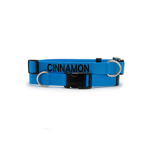 Dickens' Closet Adjustable Nylon Tuff Collar in Blue Lagoon, Large