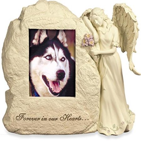 AngelStar 11Inch by 9Inch by 412Inch Pet Urn with Frame Forever in Our Hearts