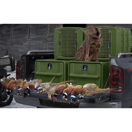 Badlands Vault  Kennebec Kennel System Olive