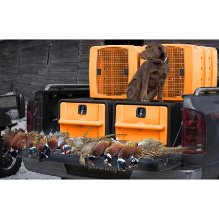 Badlands Vault  Kennebec Kennel System Orange and Black