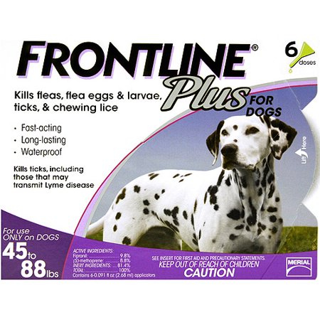 Frontline Plus Flea  Tick Topical Treatment for Large Dogs 6 Monthly Doses