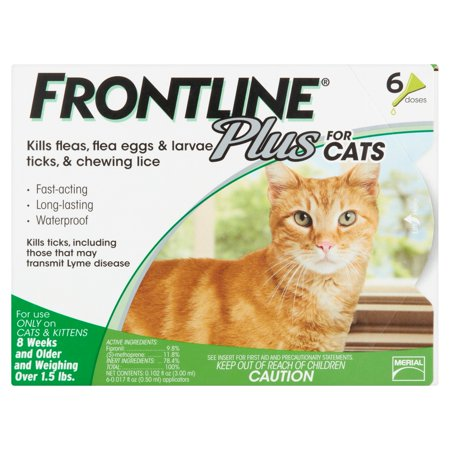 Frontline Plus Flea and Tick Treatment For Cats And Kittens 6 Monthly Doses