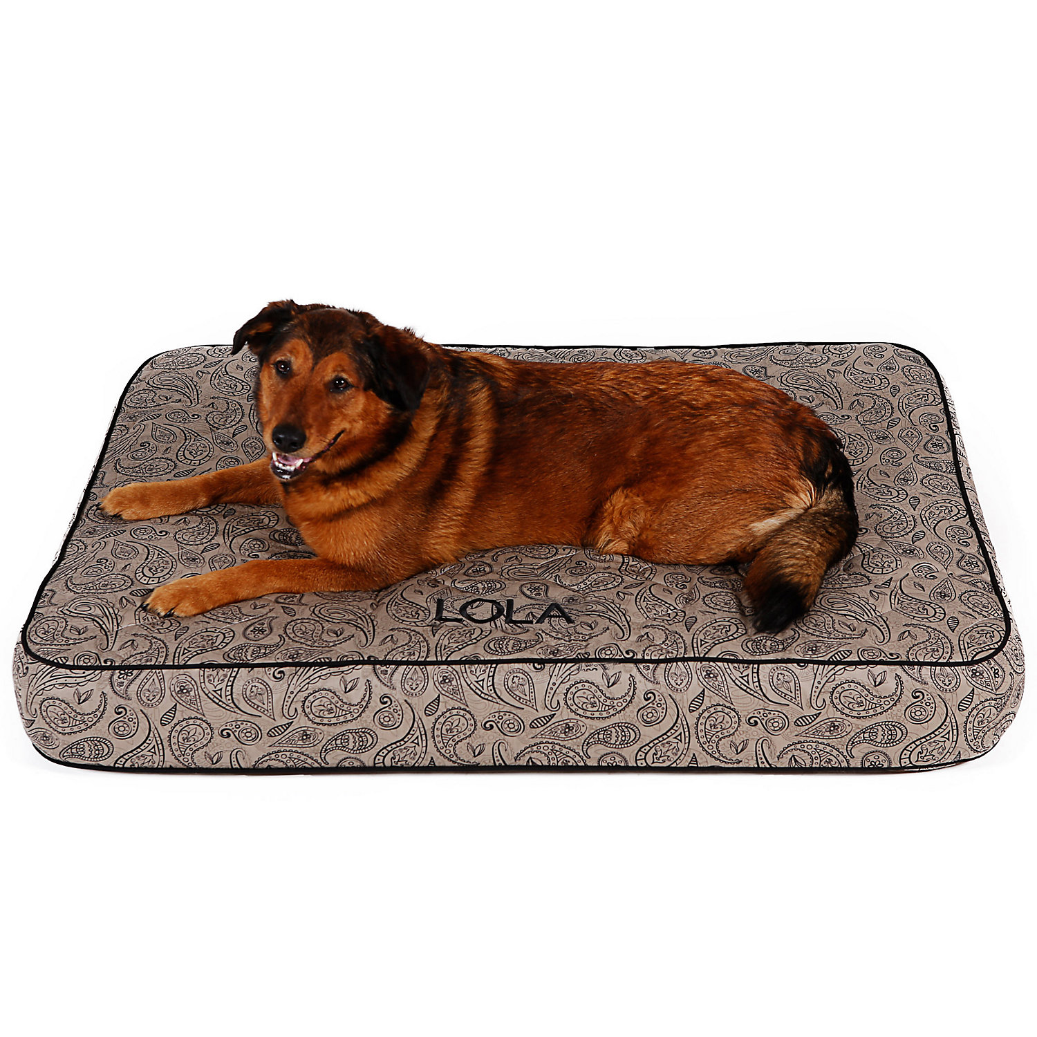 Doctors Foster  Smith Personalized Quilted Super Deluxe Taupe Paisley Dog Beds