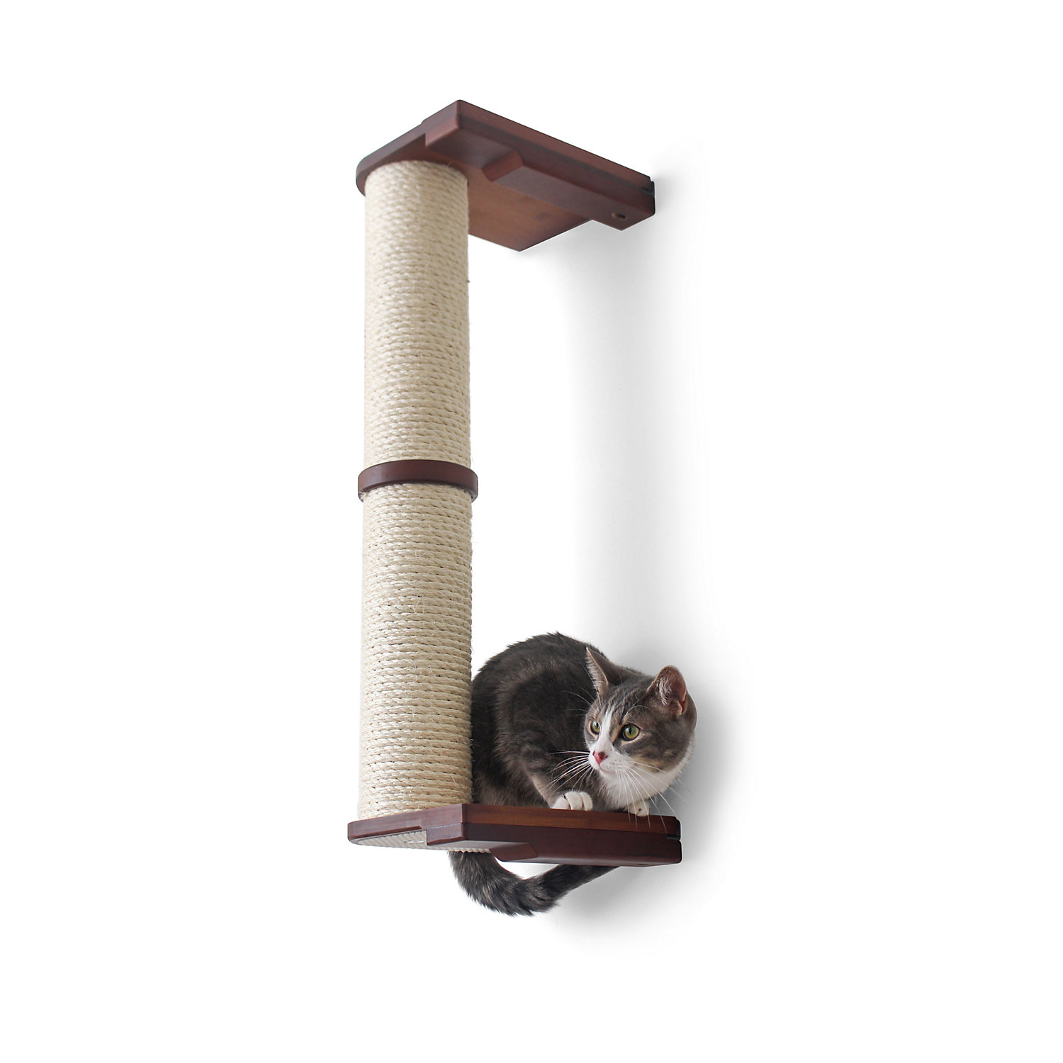 CatastrophiCreations The Cat Mod 48 WallMounted Sisal Pole for Cats in English Chestnut