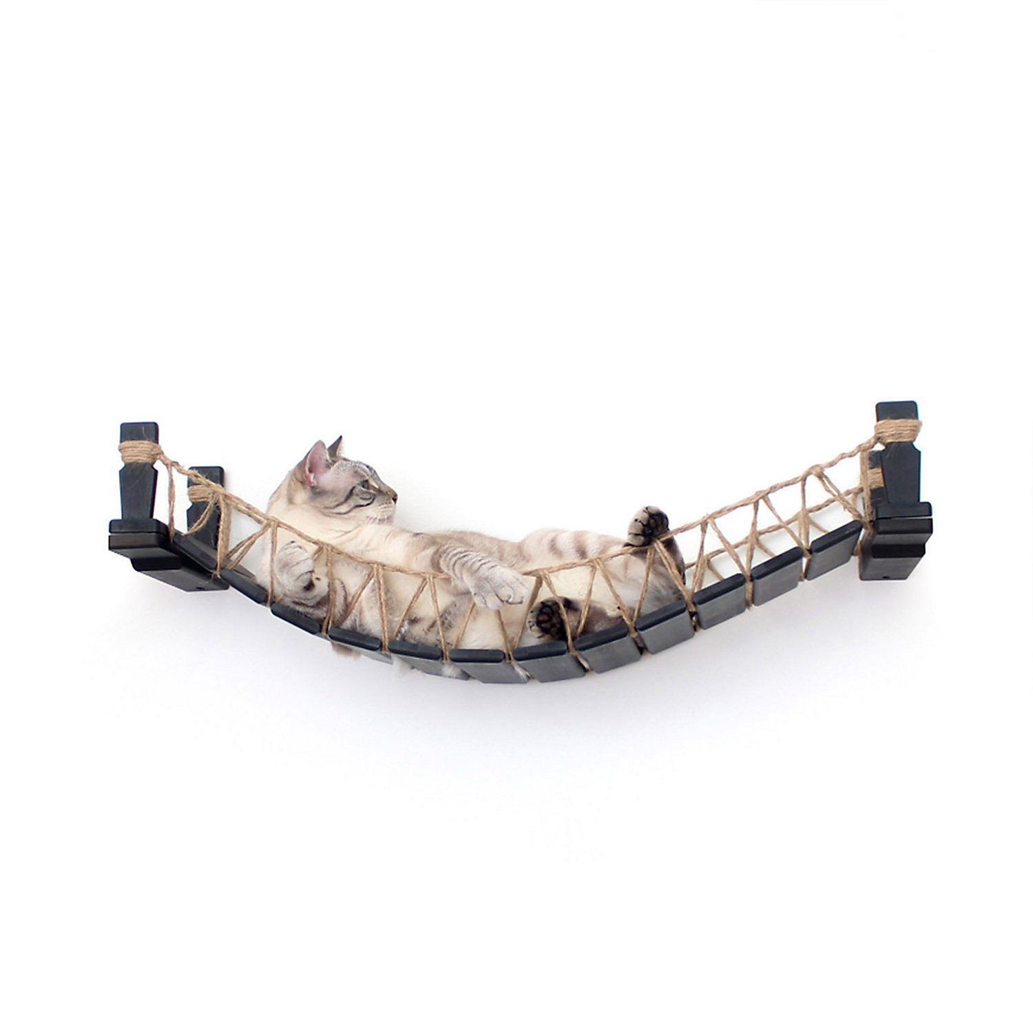 CatastrophiCreations The Cat Mod Bridge Lounge Hammocks for Cats in English Chestnut