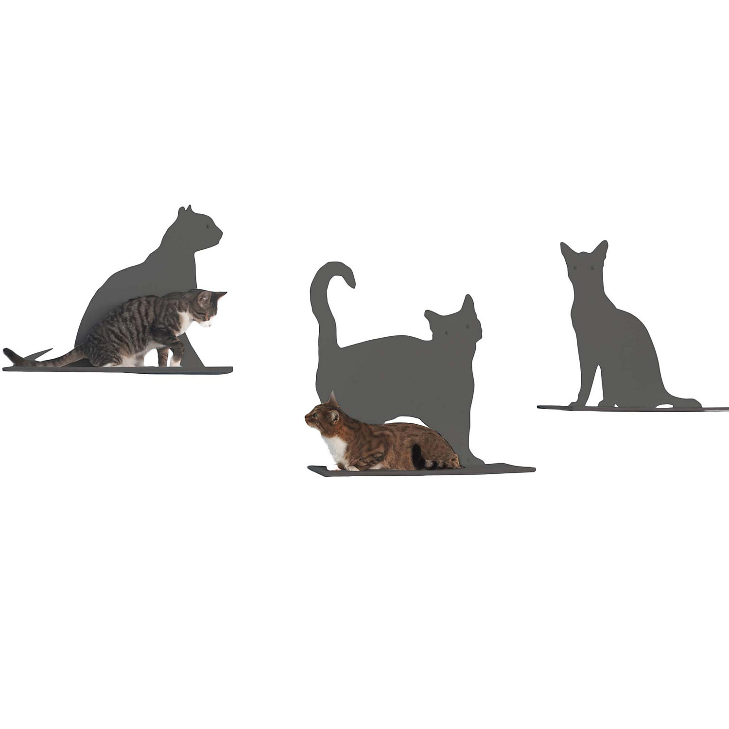 The Refined Feline Silhouette Cat Shelf Set of 3 in Titanium 20H 12 IN Gray