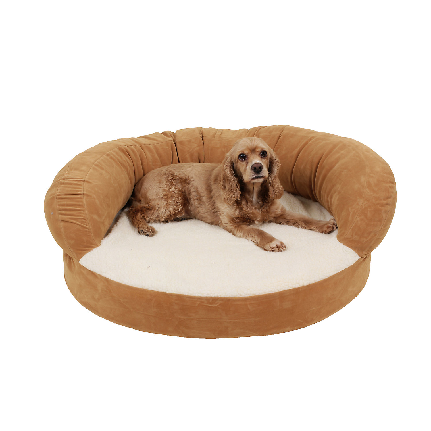 Carolina Pet Company Caramel Colored Orthopedic Bolster Dog Bed 12 H X 42 Diameter Medium Brown
