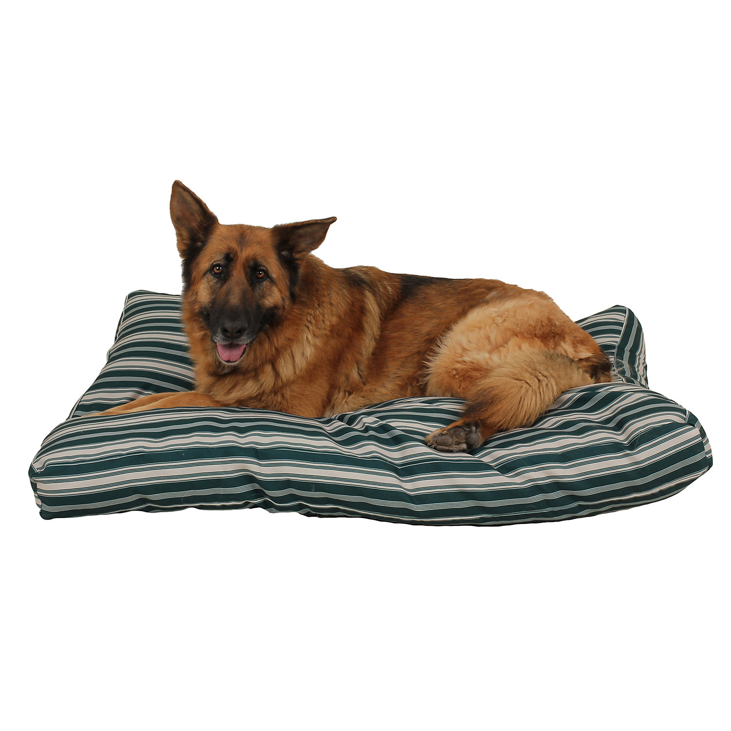 Carolina Pet Company Indoor Outdoor Jamison Green Striped Dog Bed 54 L X 44 W X 4 H Large