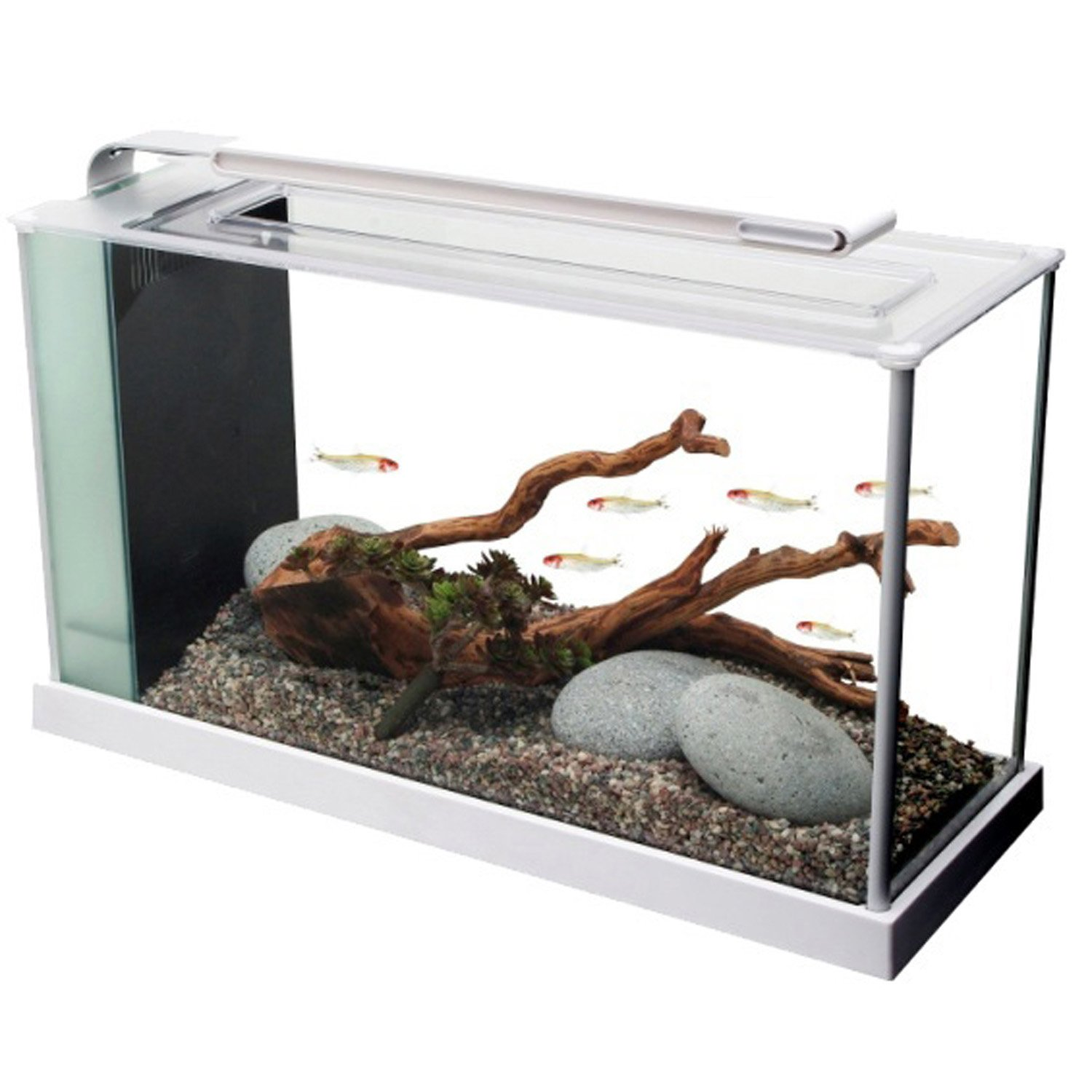 Fluval 5 Gallon Spec V Aquarium Kit White