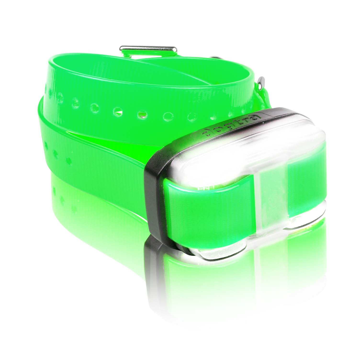 Dogtra Edge AddOn Receiver Dog Training Collar in Green