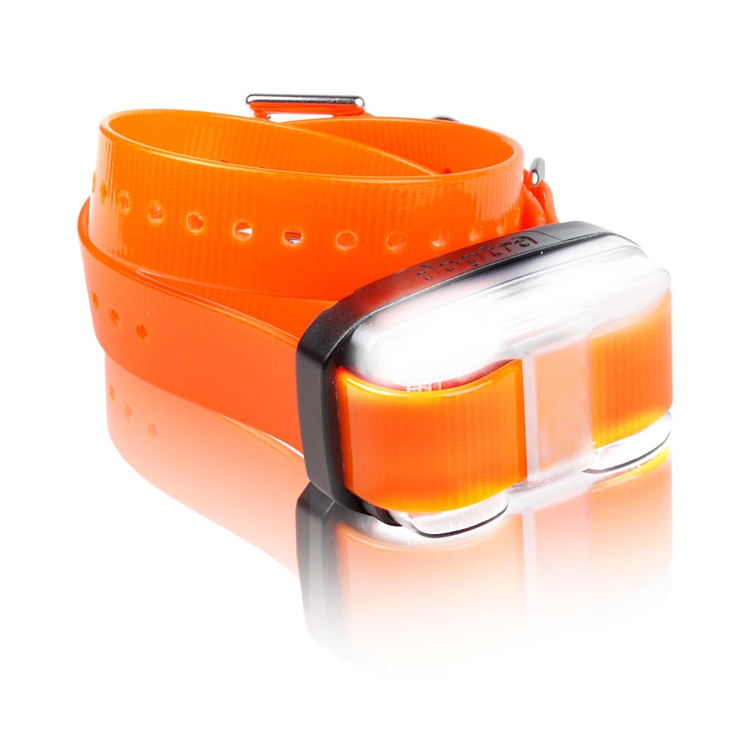 Dogtra Edge AddOn Receiver Dog Training Collar in Orange