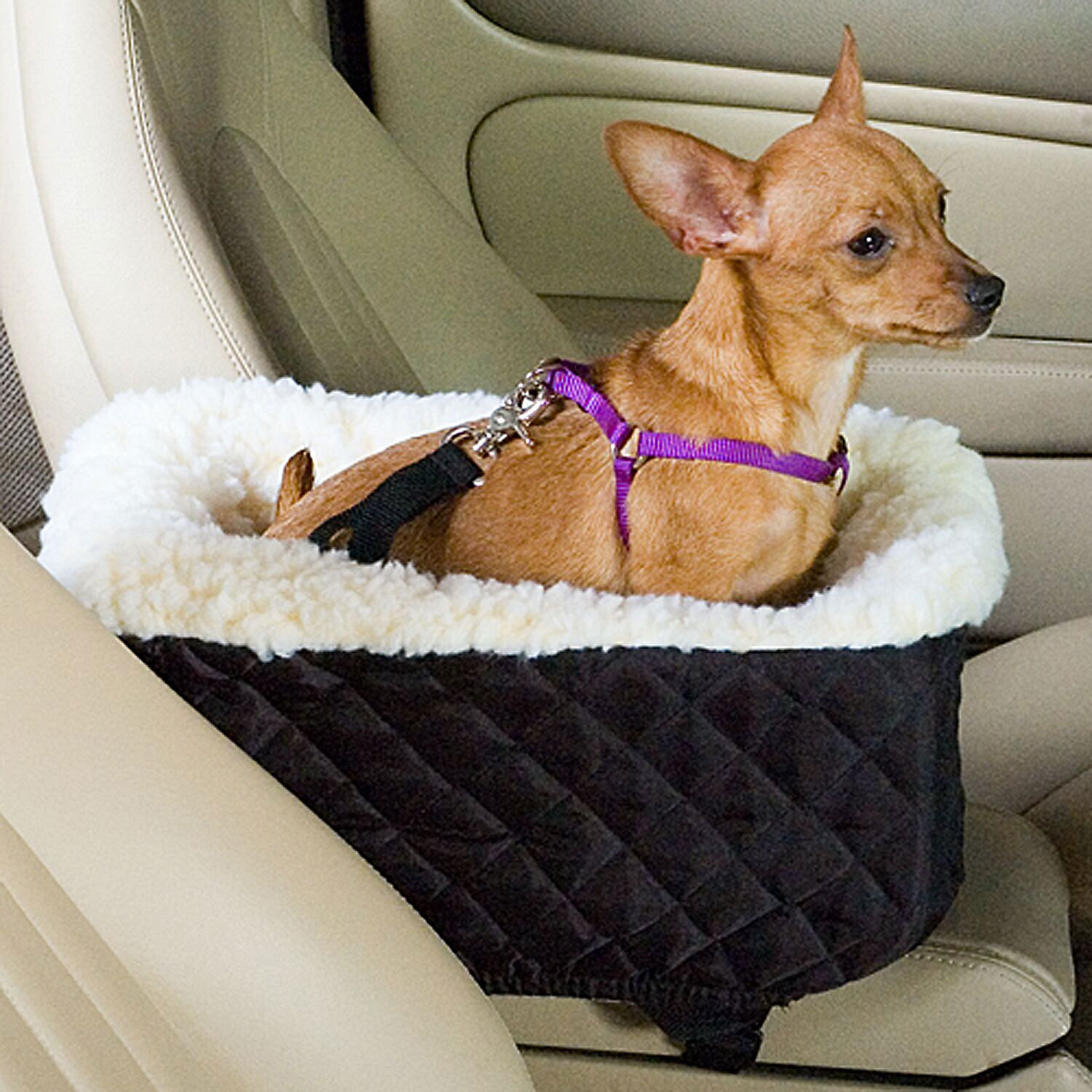 Snoozer Black Pet Car Seat Console Lookout XSmall Black  OffWhite